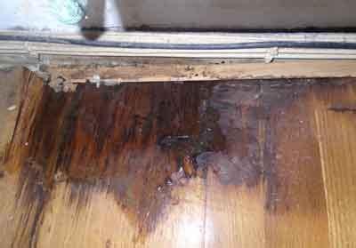 Hardwood Floor Repair Water Damage Fix Laminate Floor Water Damage Carpet Vidalondon