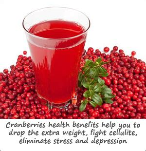 Can I Use Any Cranberry Juice To Detox by Fresh Cranberries Health Benefits For Weight Loss