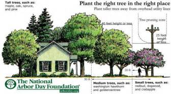 tree trimming policy hastings nebraska utilities