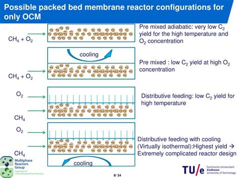 is it possible to only have one bed bug ppt design of catalytic membrane reactor for oxidative