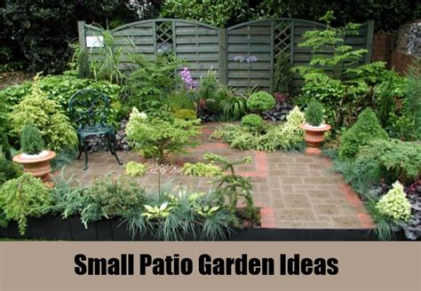 Patio Gardening Ideas Small 7 Best Patio Garden Ideas How To Design A Garden Patio Diy Martini