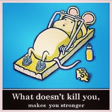 stronger what doesnã t kill you an addictã s ã s guide to peace books balancing eylan ezekiel