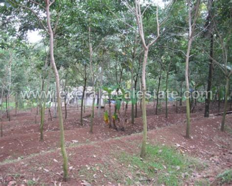 Farm Houses For Sale Cheap by Real Estate Properties For Sale Low Cost Cheap Agriculture