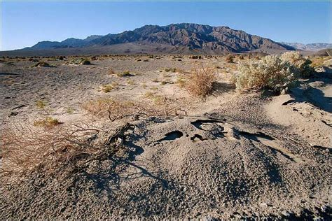 Valley Record Temp 90 Years Later Valley Sets World Temp Record Climate Central