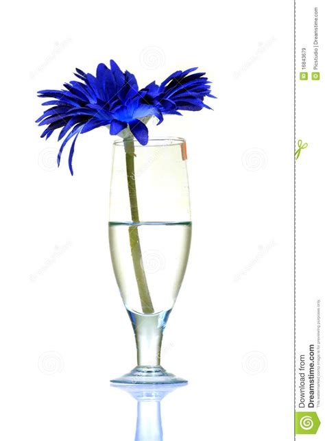 the chemistry of wine from blossom to beverage and beyond books wine and flower stock image image of bloom drink