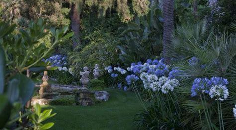 giardini in fiore foto parchi lantane e plumbago in fiore ad alassio