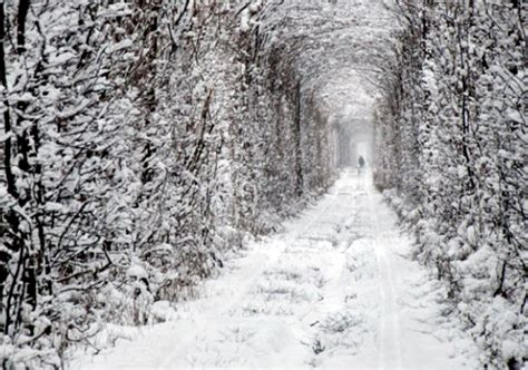 images of love in winter lugares y momentos quot tunnel of love quot