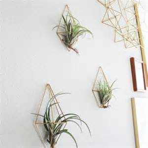 air plant wall holder the wall sconce trio set b 3 brass air from handmadesammade on