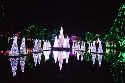 columbus zoo lights see the 2016 wildlights at the columbus zoo