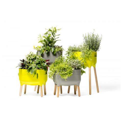 fioriere per interni design fioriere per interni di design low planter urbalive casa
