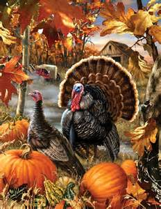 gobbler farms jigsaw puzzle fall vermont