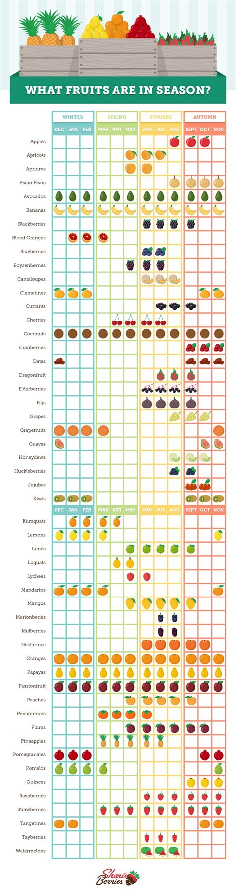 fruit seasons seasonal fruit chart