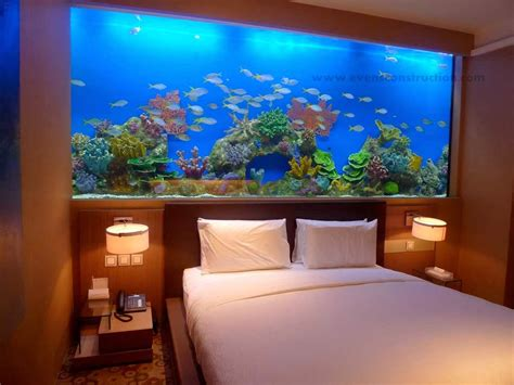 evens construction pvt ltd aquarium designs