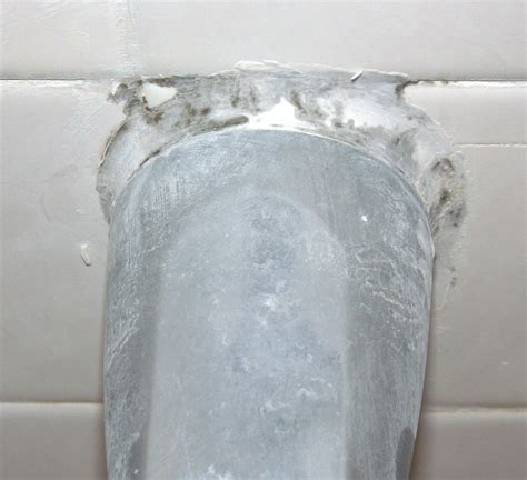 black mold bathroom 28 images black mold in the