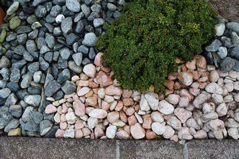 pacciamatura giardino ciottoli per pacciamatura