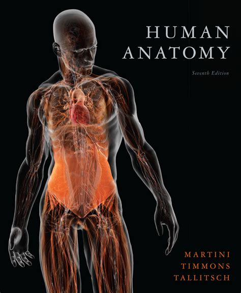 anatomy picture book anatomy picture book anatomy site