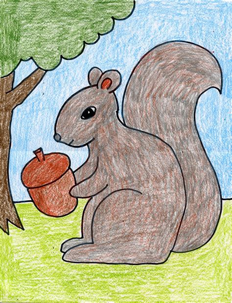 how to a for squirrel how to draw a squirrel projects for