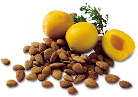 Vitamin B17 vitamin b17 laetrile disease click