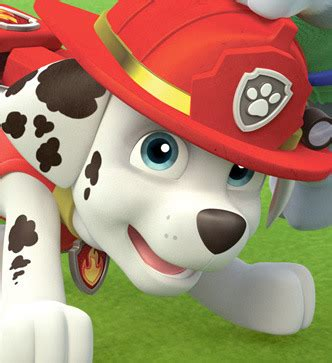 paw patrol characters paw patrol marshall and paw patrol badge image character large marshall jpg paw patrol wiki
