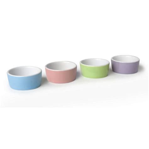 Small Bowl Food Bowls For Guinea Pigs Ceramic