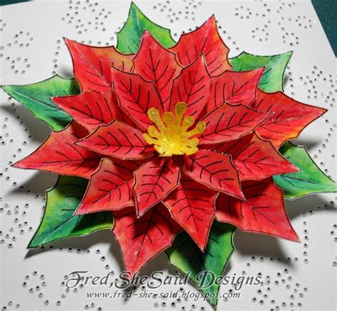 poinsettia flowers new poinsettia colors them when the