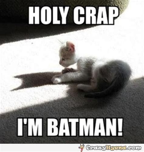 Funny Batman Meme - 17 best images about super just superhero bam on pinterest