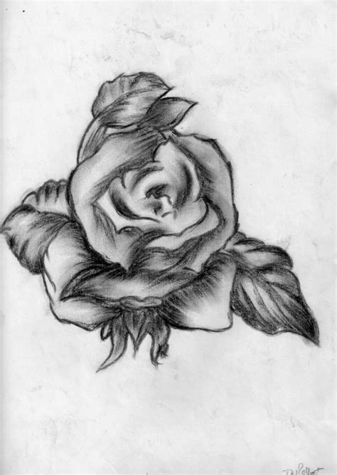 pencil drawings charcoal drawings and art galleries rose charcoal rose by thisisdebz on deviantart