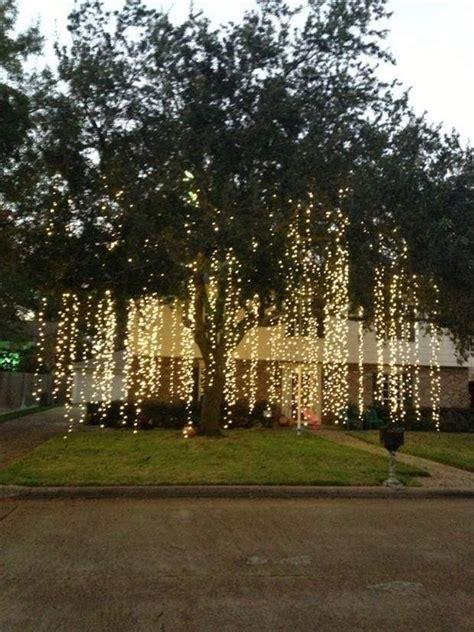 best way to put lights on a real tree 蝴wi艱teczne projektowanie i o蝗wietlenie ogrodu otoczenie