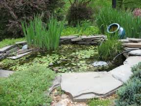 pictures of fish ponds in backyards how to use plants for backyard ponds to desire