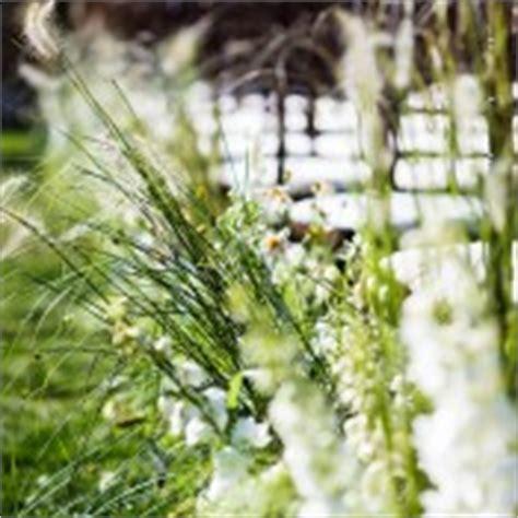 outdoor wedding aisle elizabeth designs outdoor wedding ceremony aisle elizabeth