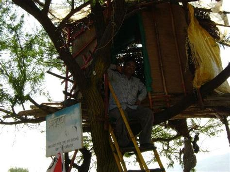 my tree house my tree house picture of mahabaleshwar satara district tripadvisor