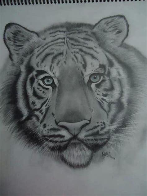 imagenes figurativas a lapiz quot tigre blanco quot l 225 piz portamina 2b 4b sobre papel blanco