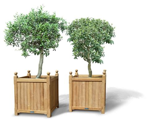 large wooden planters pair of large versailles planter teak garden