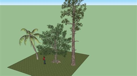 3d trees 3d warehouse