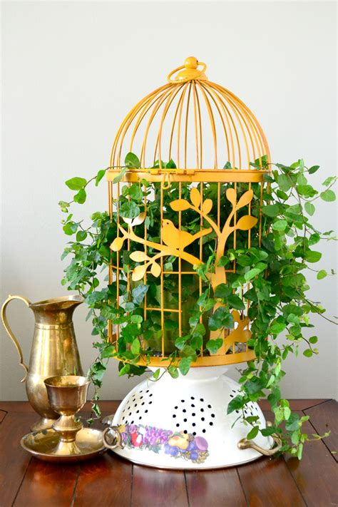 birdcage room decor bird cage planters are and eye catching decor for your garden page 2 of 2