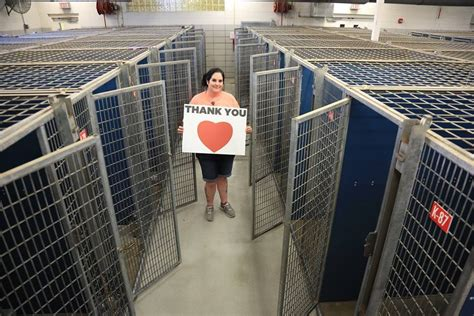 fort worth shelter happiest shelter photo shows dozens of empty cages