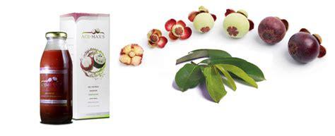 Obat Ace Maxs obat tumor parotis khasiat alami kulit manggis dan daun