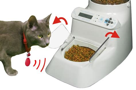 puppy feeder rfid pet feeder automatic pet feeder automatic pet feeder wireless whiskers best