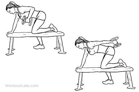 tricep kickbacks on bench 17 best images about fitness on pinterest hip flexors