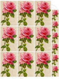 shabby chic pink roses shabby chic pink collage sheets for shabbybeautiful