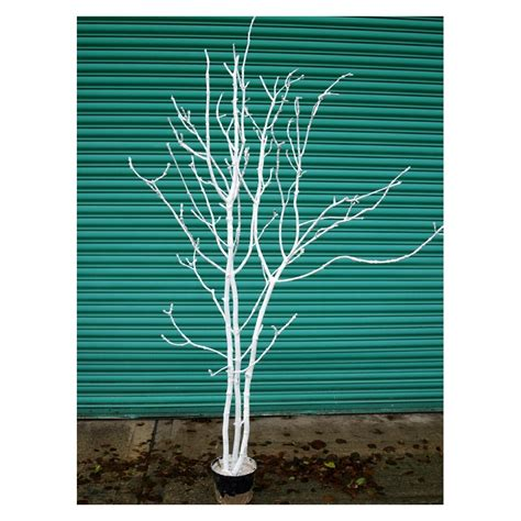 artificial bare trees white artificial tree