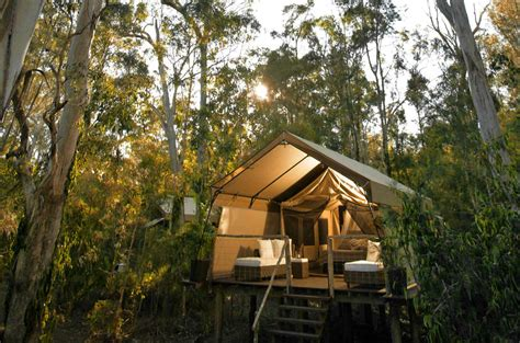 Tree Top Cabins Qld by Travelettes 187 187 Gling In Australia