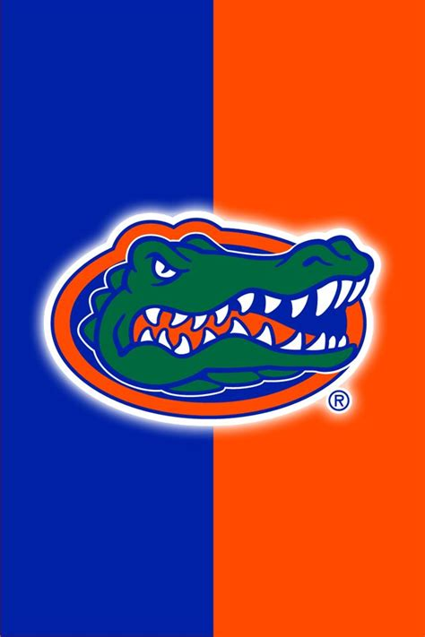 25 best ideas about florida gators football on