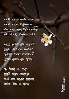 Wedding Anniversary Song Sinhala by Nisadas Kawya Sinhala Ex Cl Elakiri Community