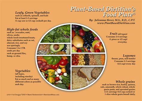 healthy and easy 100 plant based and nutrient dense recipes books getting started on a low whole food plant based diet