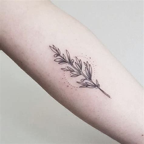 olive tattoo designs best 25 olive branch ideas on