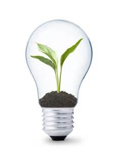 landscape light bulb energy cost benefits of converting to led landscape