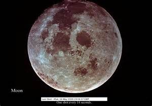Where Does Moon Live Disposition Live Moon Pictures