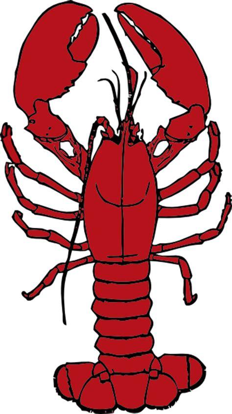 lobster clip lobster clip at clker vector clip