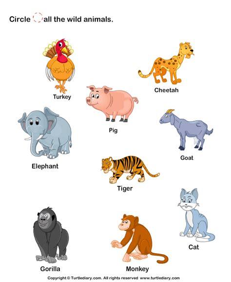printable animal games for preschoolers identify wild animals 1 worksheet turtlediary com